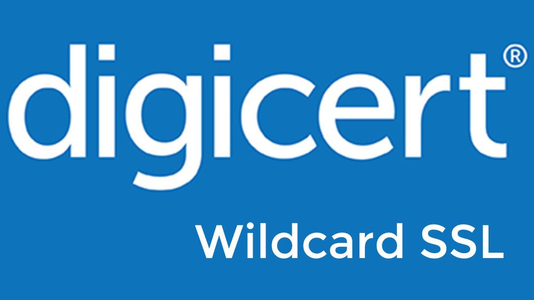 Digicert Wildcard Ssl Harga Murah Di Indonesia